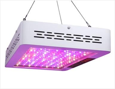 240 Watt Led Grow Light Full Spectrum Wavelength